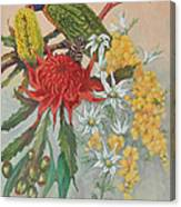 Lorikeet And Wildflowers Canvas Print