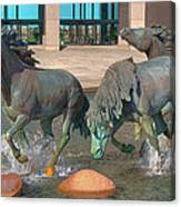 Los Colinas Mustangs 14675 Canvas Print