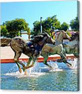 Los Colinas Mustangs 14698 Canvas Print