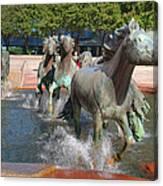 Los Colinas Mustangs 14710 Canvas Print