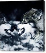 Los Lobos Canvas Print