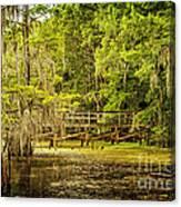 Lost Bridge On Caddo Lake Canvas Print