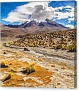 Lost In The Bolivian Desert Framed Canvas Print