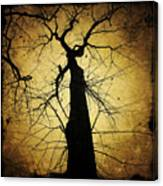 Lost In The Forest I Broke Off A Dark Twig And Lifted Its Whisper To My Thirsty Lips Canvas Print