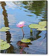 Lotus Flower Canvas Print