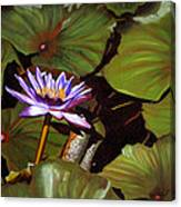 Lotus One Canvas Print
