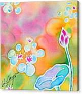 Lotus Pond Canvas Print
