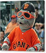Lou Seal San Francisco Giants Mascot Canvas Print