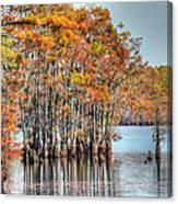 Louisiana Autumn Canvas Print