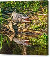 Louisiana Bayou 2 - Paint Canvas Print