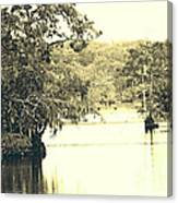 Louisiana Chicot State Park  Canvas Print