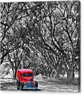 Louisiana Dream Drive Bw Canvas Print