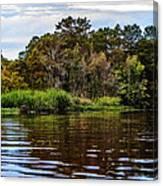 Louisiana Lake II Canvas Print