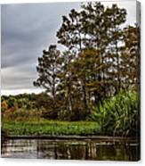 Louisiana Landscape Canvas Print