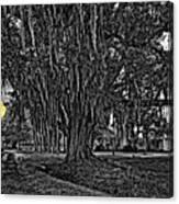 Louisiana Moon Rising Monochrome 2 Canvas Print