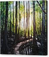 Louisiana Wildlife Throughway Canvas Print