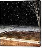 Louisiana Winter Canvas Print