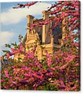 Louvre Blossoms Canvas Print