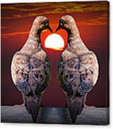 Love Dove Birds At Sunset Canvas Print