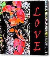 Love Fall Edition Canvas Print