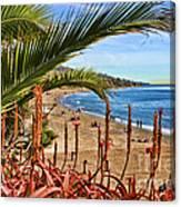 Love In Laguna Beach By Diana Sainz Canvas Print