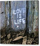 Love Is Life Canvas Print