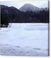 Love Lab Evening Snow 3 Canvas Print