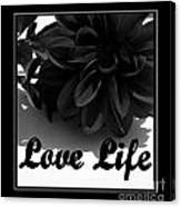 Love Life Black And White Canvas Print