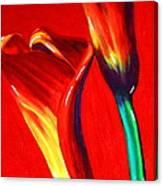 Love Lilies Canvas Print