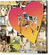 Love Of Boxers Canvas Print
