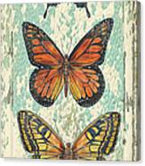 Lovely Butterfly Trio On Tin Tile Canvas Print