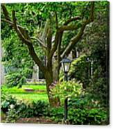 Lovely Suburban Front Yard Canvas Print