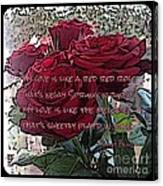 Lover's Roses Canvas Print