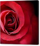 Love's Eternal Red Rose  Canvas Print