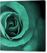 Love's Eternal Teal Green Rose Canvas Print
