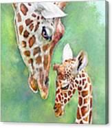 Loving Mother Giraffe2 Canvas Print