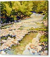 Low Flowing Creek Canvas Print