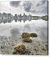 Low Tide At False Creek In Stanley Park Canvas Print