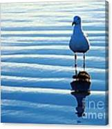 Low Tide Mirror Canvas Print
