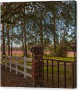 Lowcountry Gates To Boone Hall Plantation Canvas Print