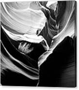 Lower Antelope Canyon Shrub Canvas Print