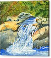 Lower Burch Creek Canvas Print