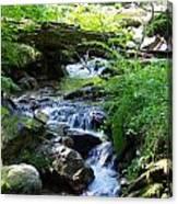 Lower Granite Falls 2 Canvas Print