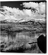 Lower Owens River Canvas Print