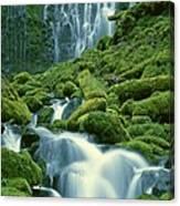 Lower Proxy Falls Canvas Print