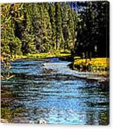 Lower Truckee River Canvas Print