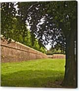 Lucca Walls Canvas Print