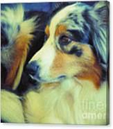 Lucky Dog's Life Canvas Print