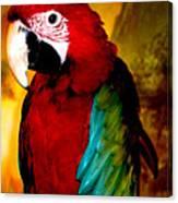Lucky Look Bird Canvas Print