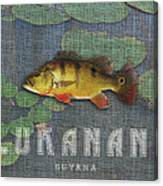 Lukanani Canvas Print